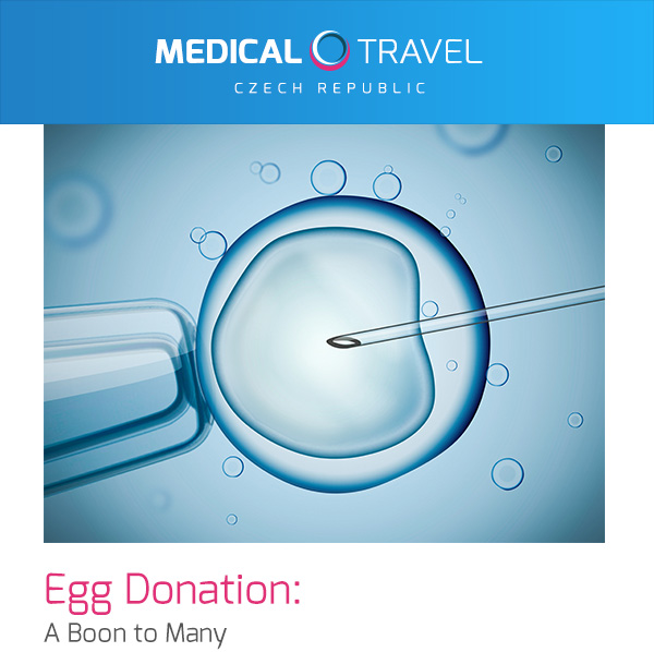 Egg Donation: A Boon to Many
