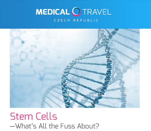 Stem Cells—What's All the Fuss About?