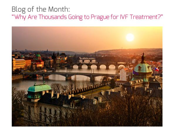 Blog of the Month: 'Why Are Thousands Going to Prague for IVF Treatment?'