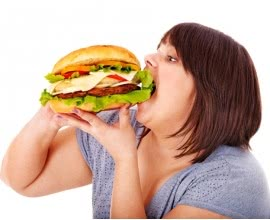 Obesity: A Brief Background