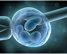 IVF PATIENT PERSONAL DATA MANAGEMENT HFE ACT 1990
